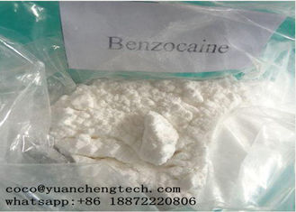 چین CAS 94-09-7 Local Anesthetic Drugs Benzocaine Powder High Purity GMP ISO Certification تامین کننده