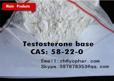 چین Anabolic Steroids Testosterone Base / Testosterone No Ester Pharmaceutical Raw Material کارخانه