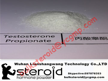 چین Positive Testosterone Steroids Powder Testosterone Propionate Without Side Effects توزیع کننده