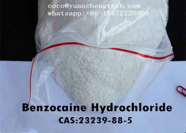 چین Local Anesthetic Drugs Benzocaine Hydrochloride / Benzociane HCl USP Grade کارخانه